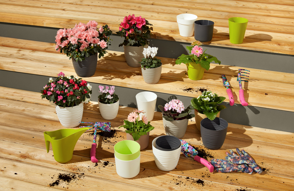 garden-3.jpg